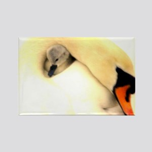 Mother Swan and Baby Rectangle Magnet
