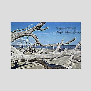 Driftwood Beach Rectangle Magnet