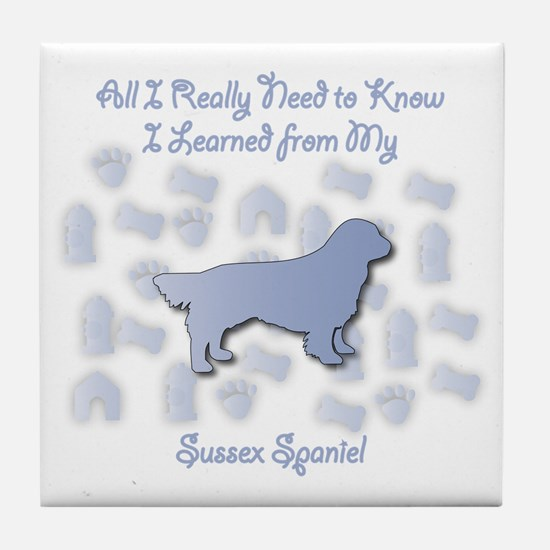Learned Sussex Tile Coaster