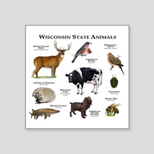 "Wisconsin State Animals Square Sticker 3"" x 3"""