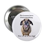 "Up to the Dogs 2.25"" Button (100 pack)"