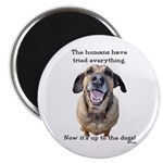 "Up to the Dogs 2.25"" Magnet (100 pack)"