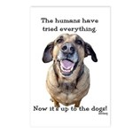 Up to the Dogs Postcards (Package of 8)