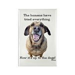 Up to the Dogs Rectangle Magnet (100 pack)