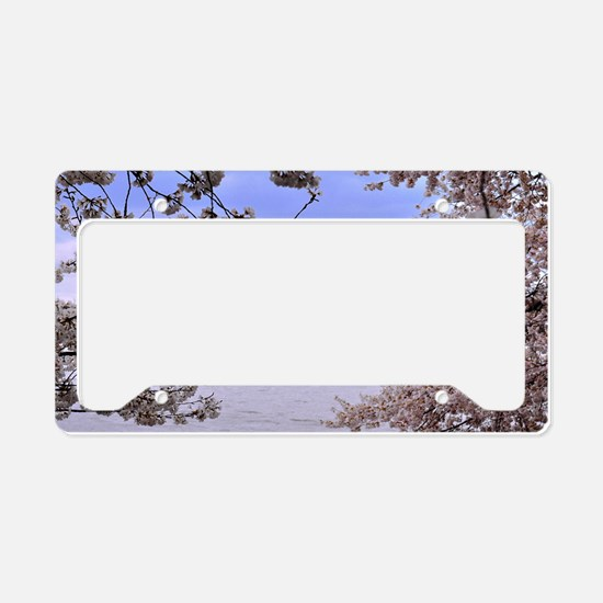 TJ Memorial 3 License Plate Holder