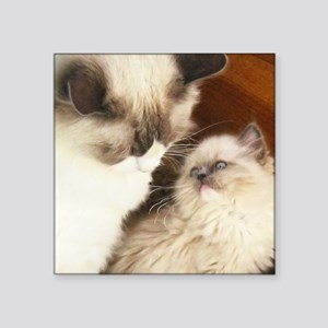 "Ragdoll Mother and Child ro Square Sticker 3"" x 3"""