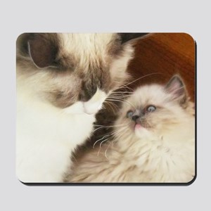 Ragdoll Mother and Child round2 Mousepad