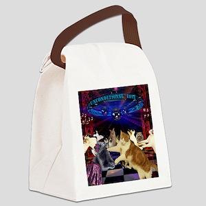Disco Poppy Canvas Lunch Bag