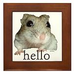 Hello... Goodbye Framed Tile