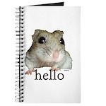 Hello... Goodbye Journal