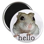 "Hello... Goodbye 2.25"" Magnet (100 pack)"