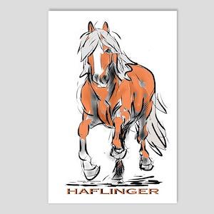 Haflinger Postcards (Package of 8)