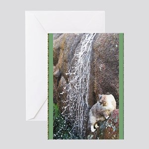 Cat in a Waterfall book grn Greeting Card
