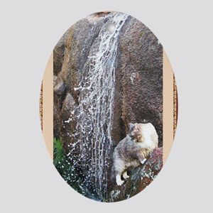Cat in a Waterfall book red Oval Ornament