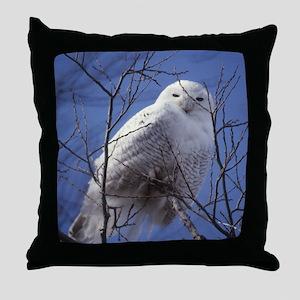 Snowy Owl - White Bird against a Sapp Throw Pillow