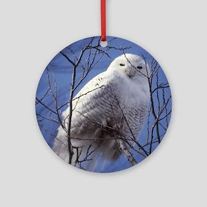 Snowy Owl - White Bird against a Sa Round Ornament