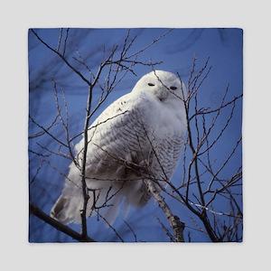 Snowy White Owl Queen Duvet