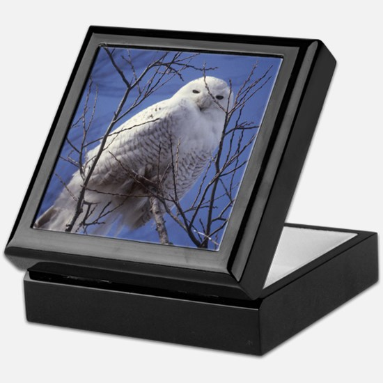 Snowy White Owl Keepsake Box