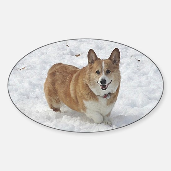 Red and White Corgi in the Snow Sticker (Oval)
