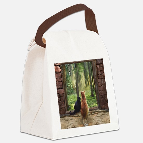 Doorway into Forever nc Canvas Lunch Bag