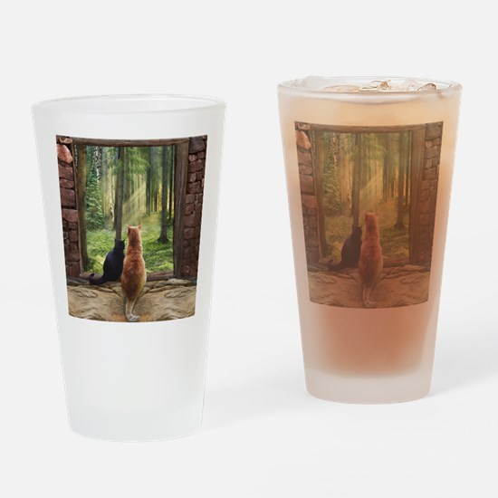 Doorway into Forever nc Drinking Glass