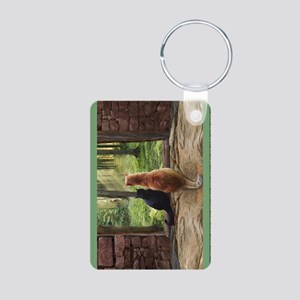 Doorway into Forever book2 Aluminum Photo Keychain