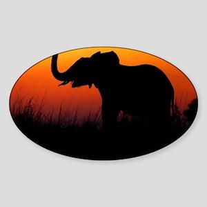 Elephant at Sunset Sticker (Oval)