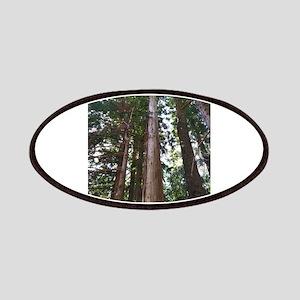 Cedar Trees Patch