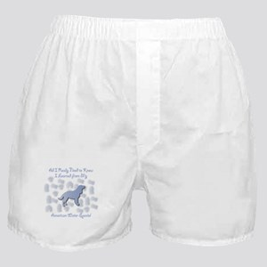 Learned Spaniel Boxer Shorts