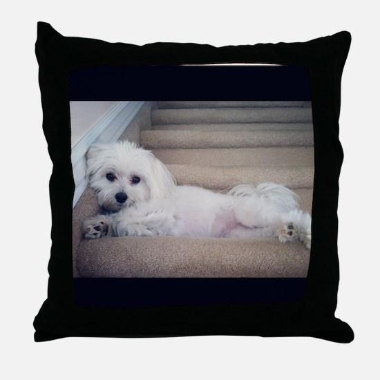 Sadie 5 Throw Pillow