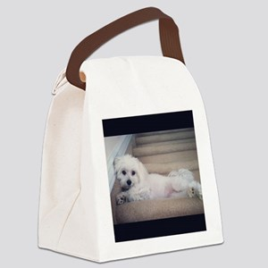 Sadie 5 Canvas Lunch Bag