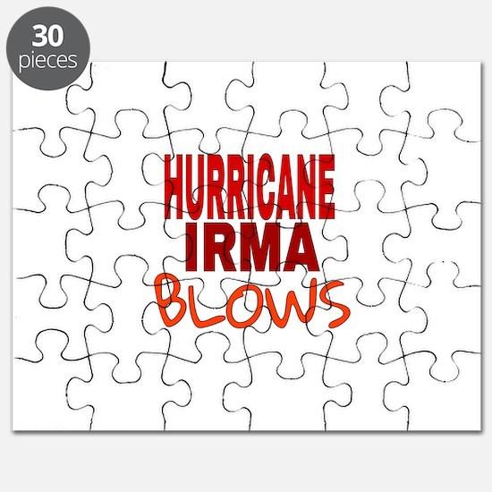 Hurricane Irma Blows Puzzle