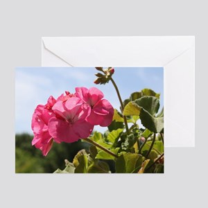 Pink Geranium in Virginia Sunshine Greeting Card