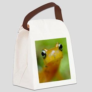 Salamander Canvas Lunch Bag