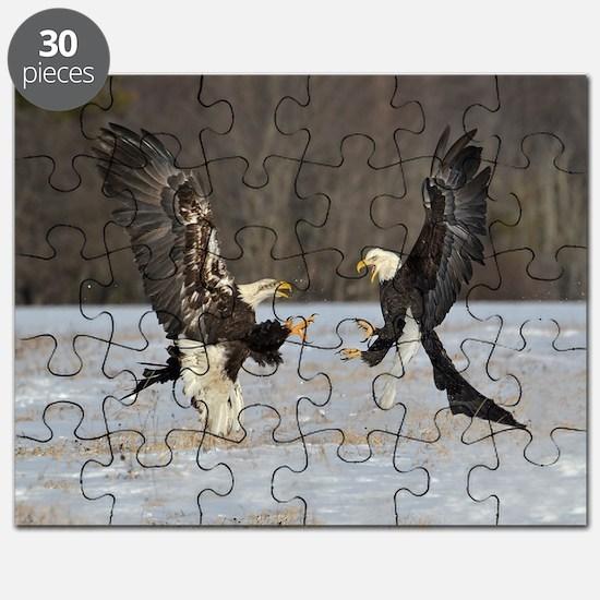 gelpad 9 Puzzle