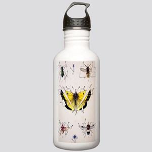 19th Century Insect se Stainless Water Bottle 1.0L