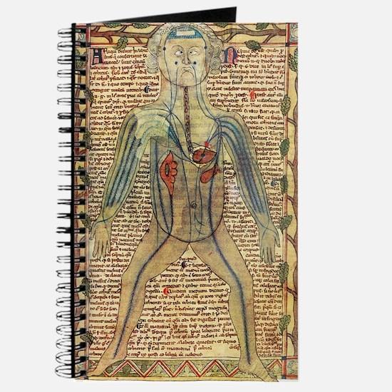 Circulatory system, 17th century Journal