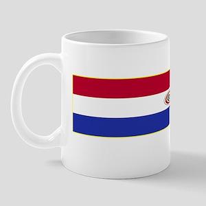 Paraguay Made In Designs Mug