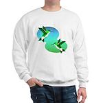 Hummingbirds Sweatshirt