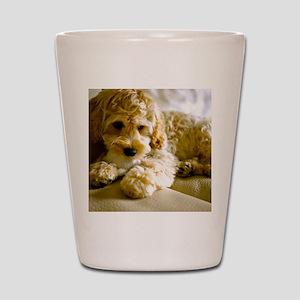 The Cockapoo Puppy Shot Glass