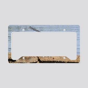 The Pelican at Rockport Beach License Plate Holder