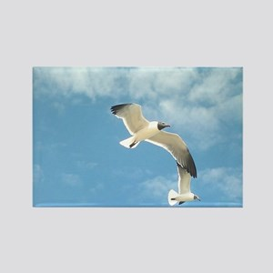 Seagulls in Flight Calendar Rectangle Magnet