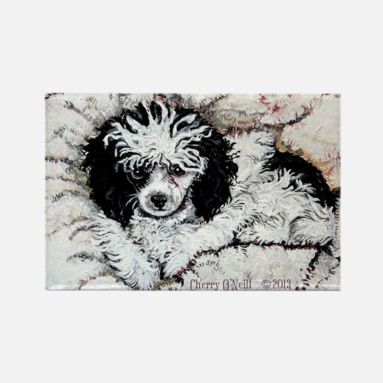 Toy Poodle Rectangle Magnet