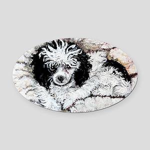 Toy Poodle Oval Car Magnet