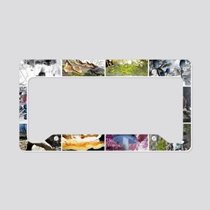 Funky Fungi Collage License Plate Holder