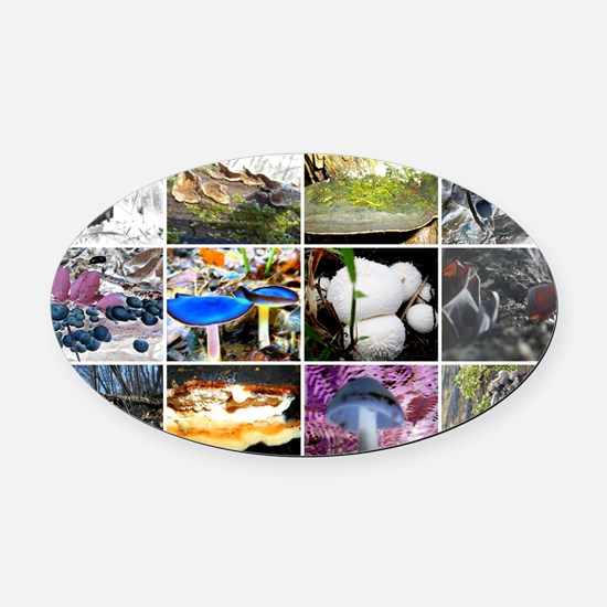 Funky Fungi Collage Oval Car Magnet