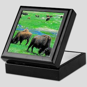 Buffalo 10X9 Keepsake Box