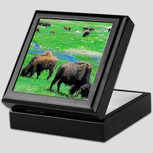 Buffalo 19X16 Keepsake Box