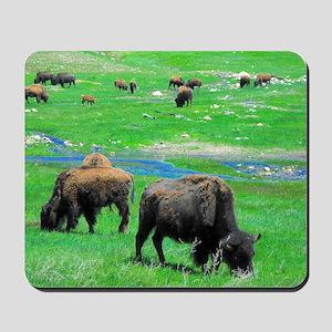Buffalo Orig Mousepad