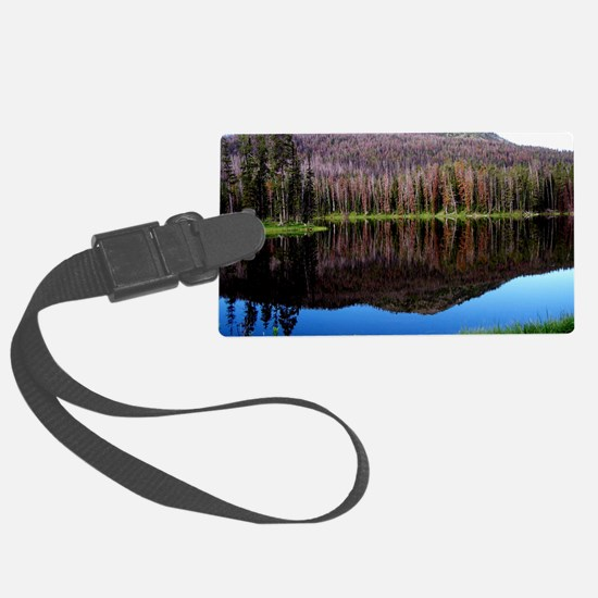 Reflection Luggage Tag